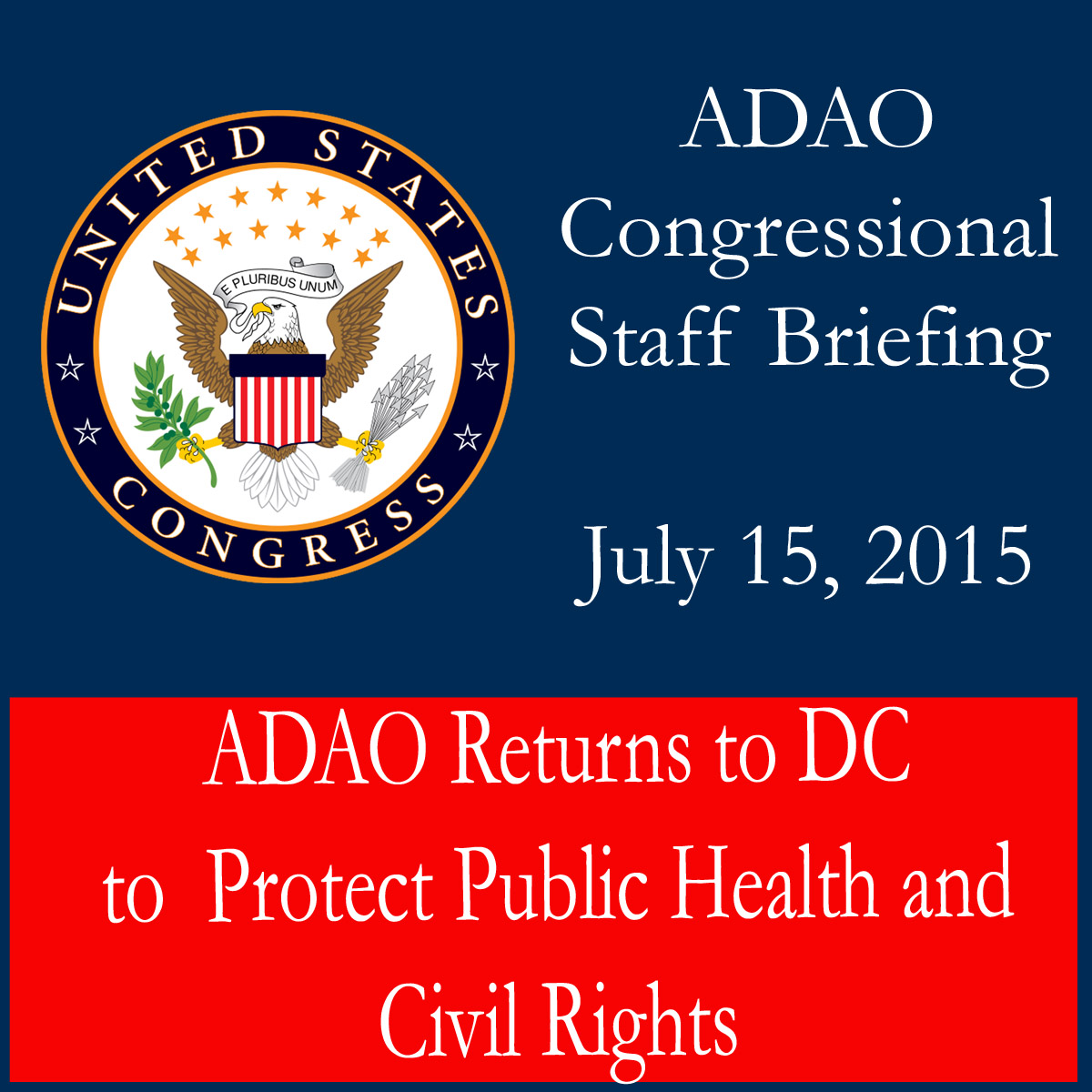 2015 ADAO Briefing_edited-1