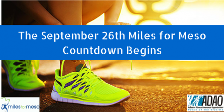 The Miles for Meso Countdown Begins CANVA (2)