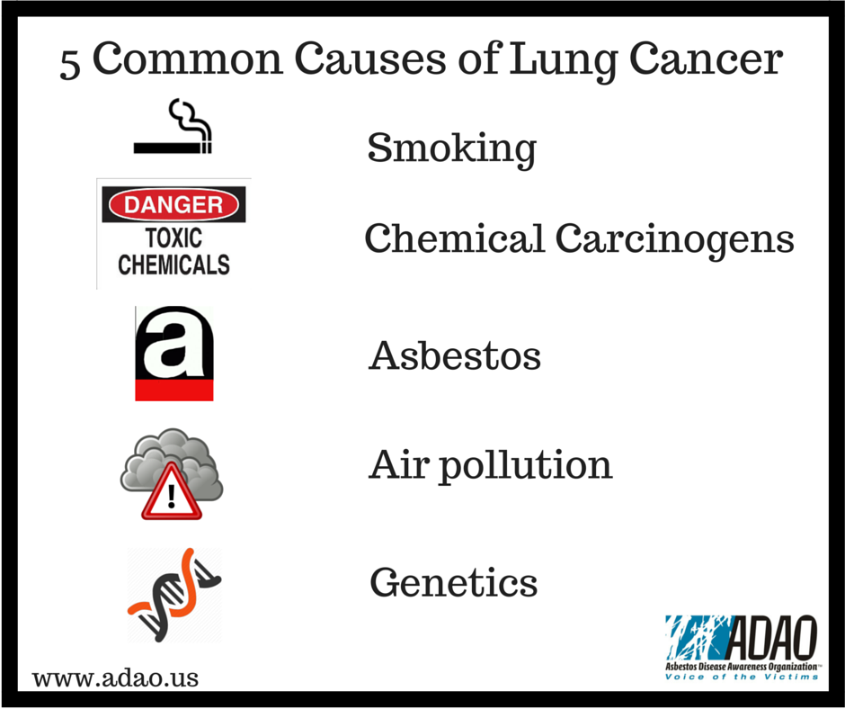 causes of lung cancer It's official: breathing dirty air causes lung cancer the world health organization on thursday declared air pollution a human carcinogen like tobacco.