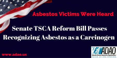 Senate TSCA Reform Bill Passes Recognizing Asbestos as a Carcinogen CANVA