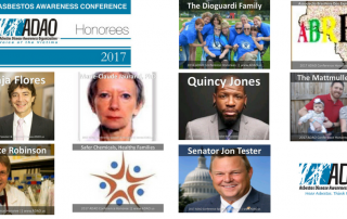 Resized Honorees 2017 AAPC CANVA