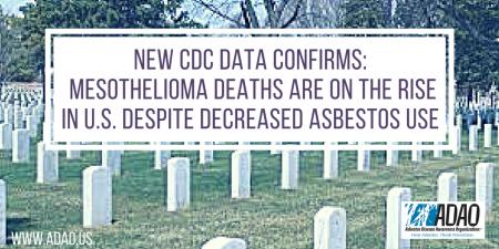 CDC Report CANVA (1)
