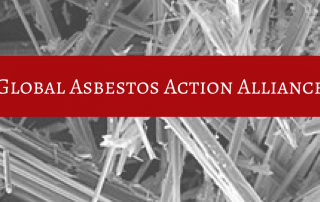 Global Asbestos Action Alliance CANVA