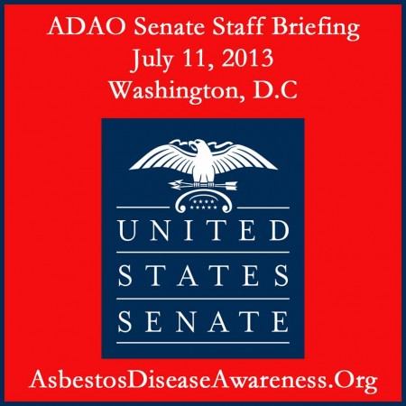 ADAO Senate Briefing July 2013 copy