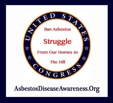 Ban Asbestos Struggle copy