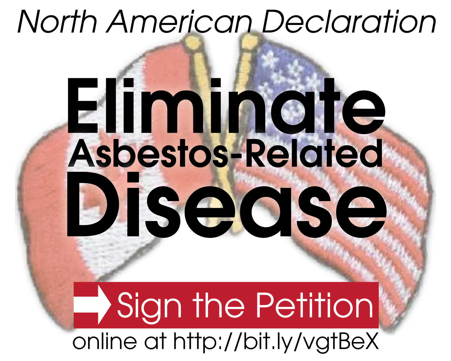North American Declaration to Eliminate Asbestos-Related ...